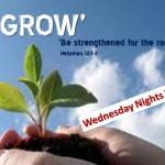 Grow (1170 x 878)