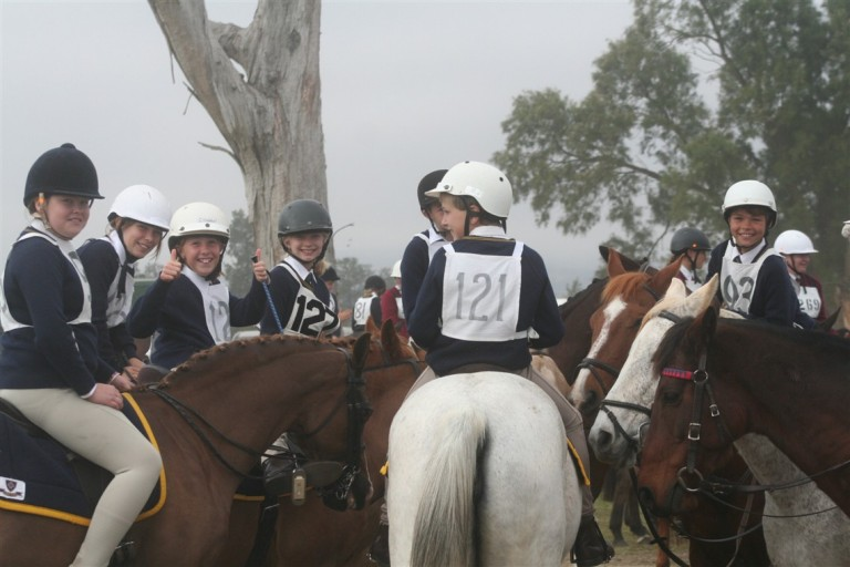 SGS Horse Sports